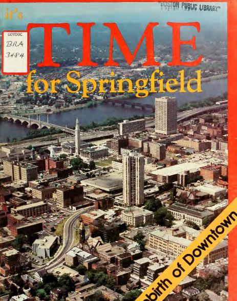 کتاب این زمان برای اسپرینگفیلد: تولد دوباره در مرکز شهر