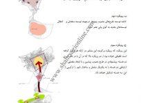 طرح جامع شهر خوی2